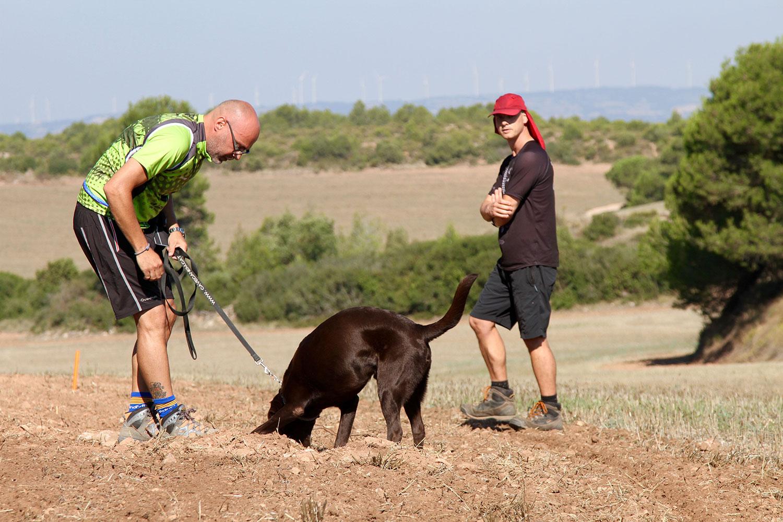 Adiestramiento rastreo canino
